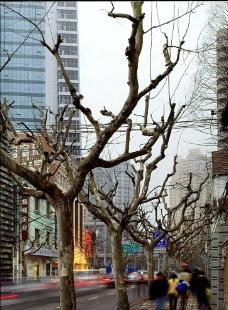 国外旅游城市摄影照片图片