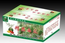 西瓜包装箱(展开图)图片