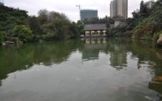 珠江公园一角图片