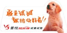 东南汽车 V3菱悦图片