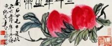 三千年寿果图片