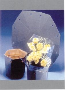 世纪之星包装作品集0035