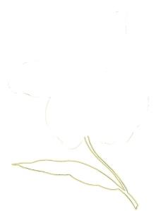 彩绘花纹0405