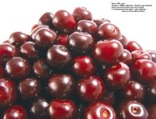 莓果0236