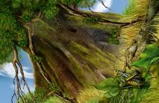 大自然景观0070
