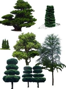 绿化 素材图片
