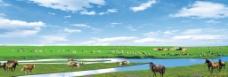 大草原风光图片