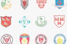 全球2487个足球俱乐部球队标志(爱尔兰)图片