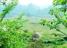 万峰林美景4图片