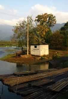 河边的水牛与小屋图片