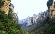 金鞭溪峡谷图片