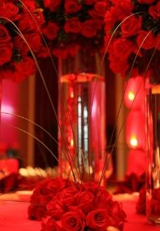 桌花玫瑰图片