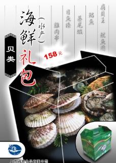 食品广告贝类图片