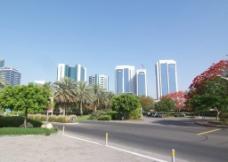 迪拜街景2图片