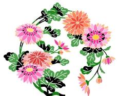 美丽的花儿图片
