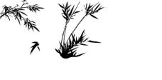 竹子矢量素材 竹子图片