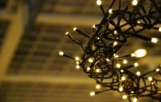 鸟巢灯图片